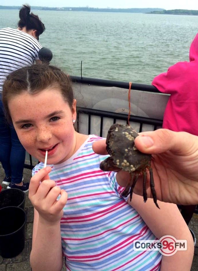 Crab Fishing in East Cork as part of Cork Harbour Day