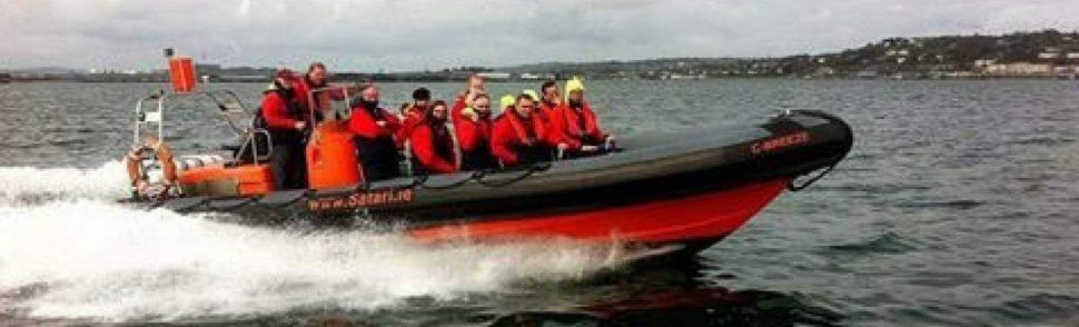 Cork Sea Safari Cork Harbour Festival