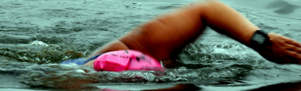 Swimmer taking part in Rebel Plunge as part of Cork Harbour Festival