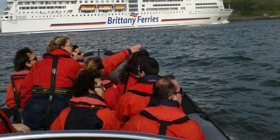 Cork Harbour Festival - Power boat harbour tour -Sea Safari